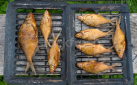 Копченная рыба на опилках дуба