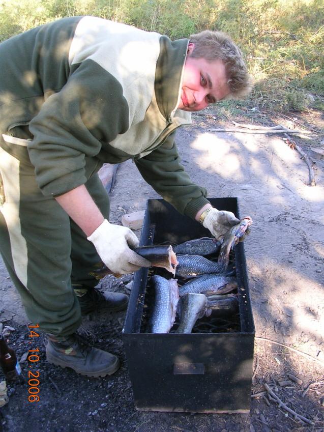 Закладывание рыбы в коптильню