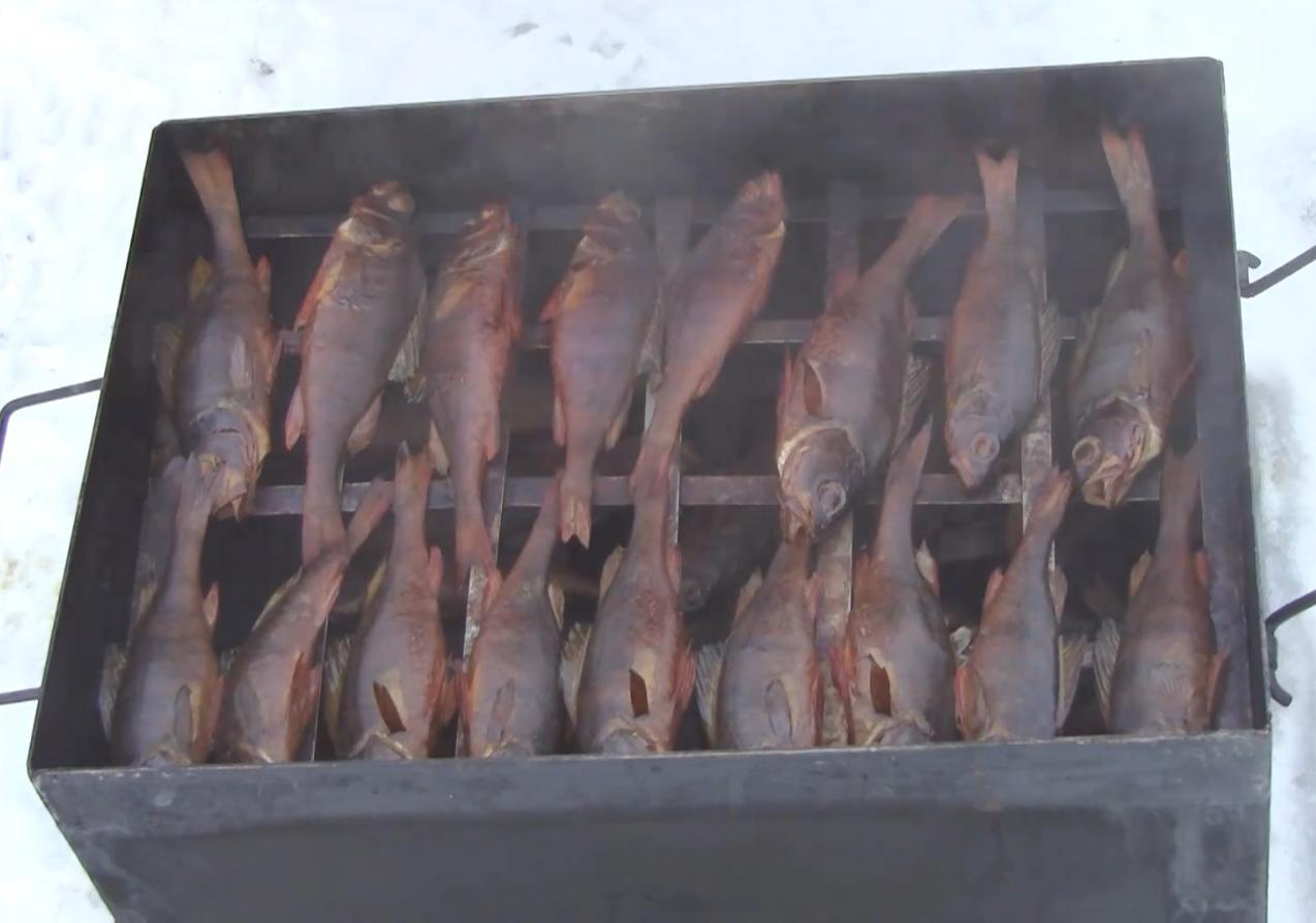 Как закоптить рыбу окунь в домашних условиях