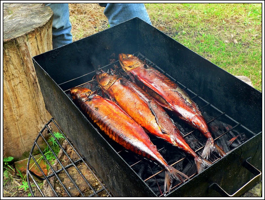 Как коптят рыбу холодного копчения в домашних условиях